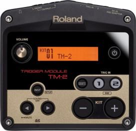 roland TM-2.1.jpg